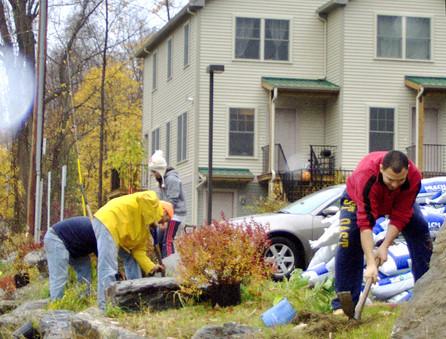 Volunteers Landscaping