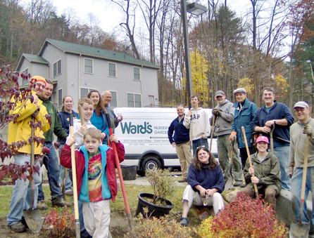 Volunteers Plant Foliage